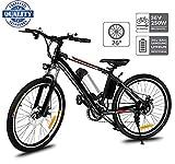 Hiriyt 26' Bicicleta eléctrica de montaña, 250W, Batería 36V E-Bike Sistema de Transmisión...